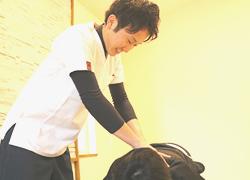 丸亀坂口鍼灸整骨院・整体院:腰痛・坐骨神経痛・ギックリ腰の施術写真01